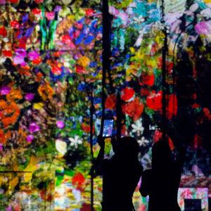 Photo de deux ombres correspondant au personnes du public devant un tableau lumineux coloré lors des illuminations de la cathédrale de Rouen